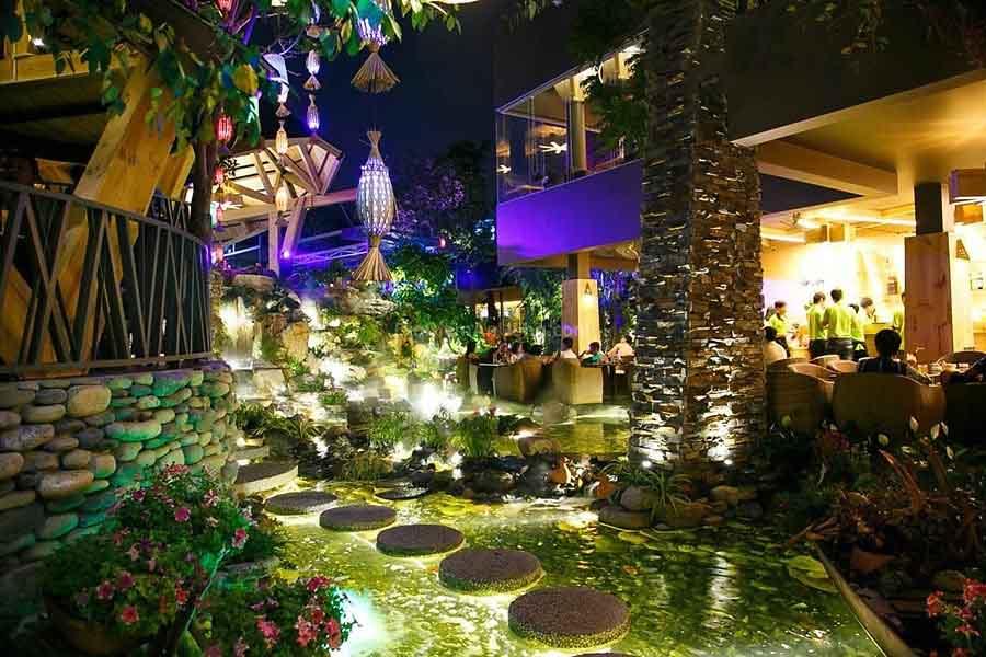 Miền Thảo Mộc - quán cafe đẹp ở quận 11