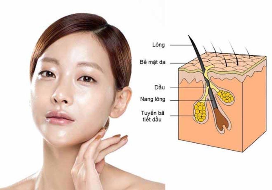 Description: Da dầu là gì? Cách chăm sóc và điều trị da dầu nhờn bị mụn